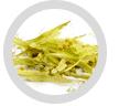 Arbre à thé citronné